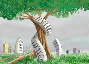 albero palazzi